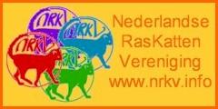 logo_nrkv4